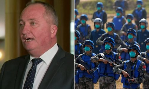 Acting Prime Minister Barnaby Joyce says 'we want peace' with China