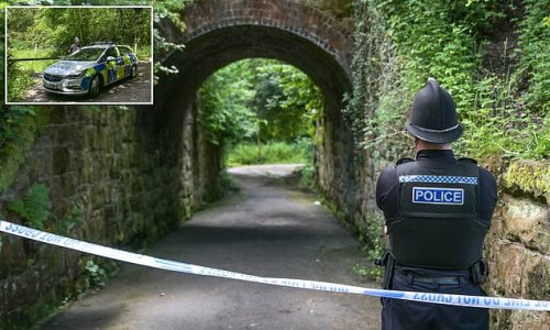 Teenagers aged 14 and 15 are arrested on suspicion of murder