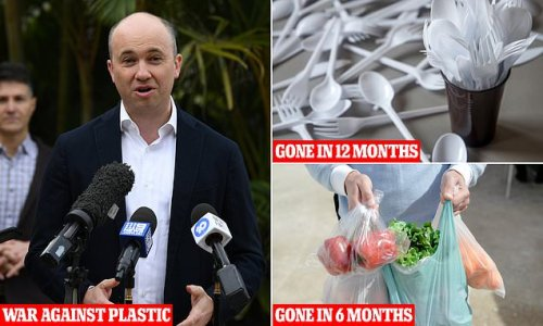 New South Wales to ban plastic straws and cutlery within 12 months