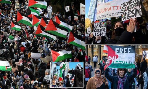 Sydney flooded with pro-Palestinian protestors during demonstration