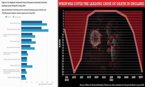Covid was only the 24th leading cause of death in England in May