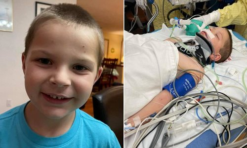 Boy, 6, fighting for his life after lawn mower threw steel at his head