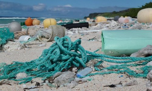 Four BILLION plastic particles from all over the world found on island