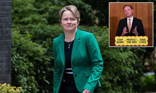 Bungling ex-Test and Trace boss Dido Harding 'wants to run the NHS'