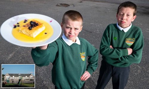 Outrage over custard and ice cream ban at Scottish school