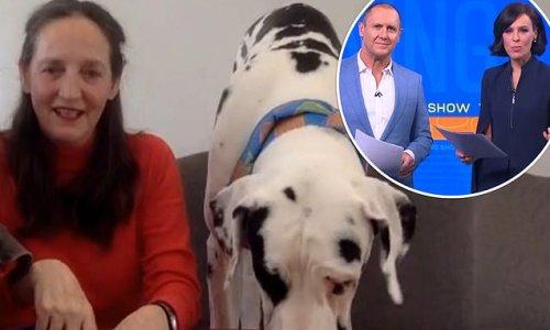 Sarah Ferguson's sister Jane leaves Morning Show viewers baffled