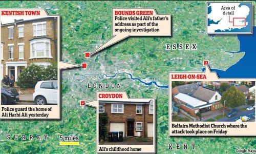 Terror suspect 'wanted to be a doctor'