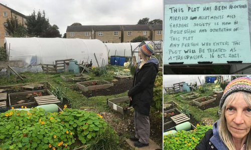 Allotment holder left quaking after eviction over 'personal vendetta'