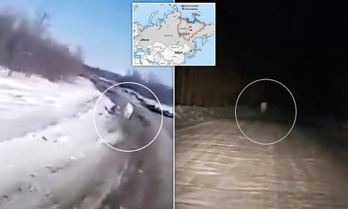 Lost polar bear is now 500 MILES from its natural habitat in Russia