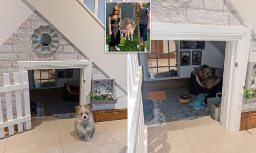 Family create incredible dog house under the stairs for just £100