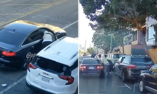 Brazen smash-and-grab thieves in San Francisco steal bags from cars