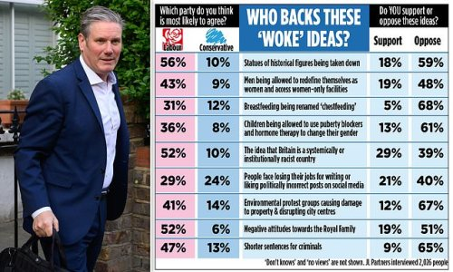 Sir Keir Starmer's Labour Party out of touch with opinion, poll finds