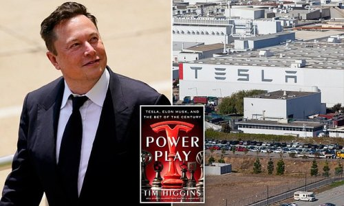 Elon Musk once demanded Tim Cook make him Apple CEO, book claims