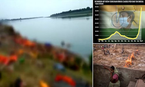 150 rotting bodies of 'Covid patients' wash up on the banks of Ganges