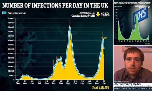 SAGE adviser warns Covid pandemic ISN'T all over 'quite yet'