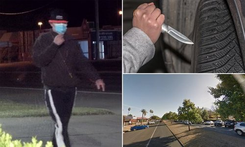 Mystery man goes on car attack spree in Tamworth