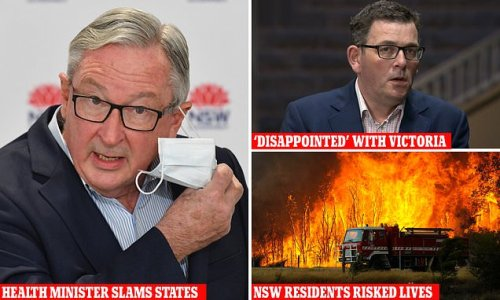 Health Minister slams Dan Andrews for betraying NSW during pandemic
