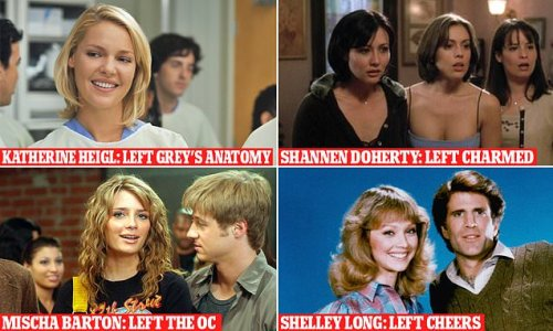 These stars' careers never recovered after they left a hit show