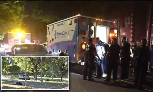 One dead, three injured in Bronx park shooting