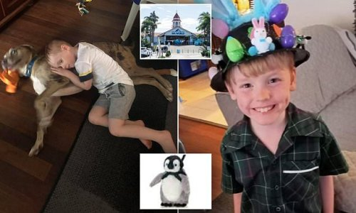 Boy, 6, who injured himself with Sea World toy dies in hospital