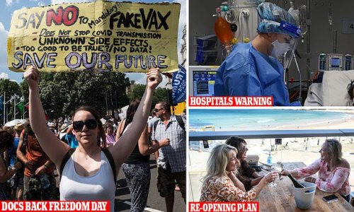 AMA approves national reopening plan but warns of hospital chaos