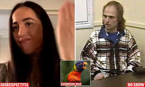 Covid court debacle: From squawking parrots to lunatics in capes