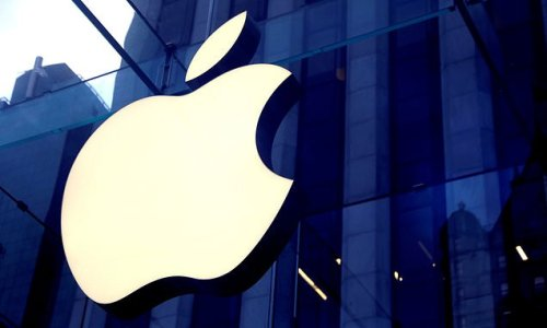 Apple invests £145m to launch fund protecting trees