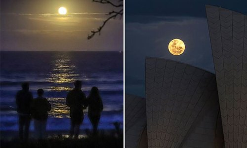 Tonight a stunning blue moon will rise - find out where YOU can see it