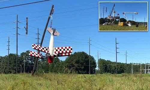 Plane crashes into power lines leaving pilot dangling above the ground