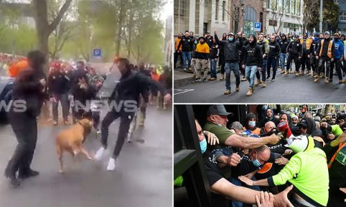 RSPCA charges protester filmed kicking a dog during Melbourne rally