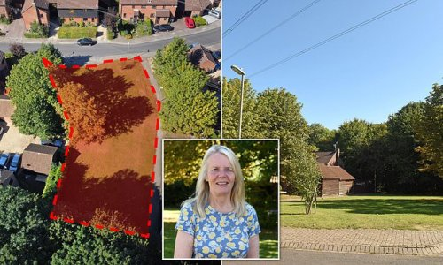 Villagers raise £45,000 to buy back their green space