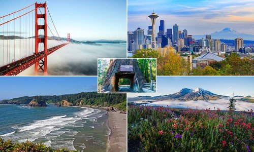 The joys of a road trip from San Francisco to the buzz of Seattle