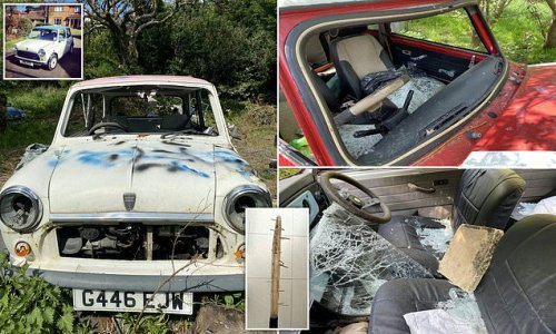 Thugs destroy family's collection of vintage Minis with a cricket bat