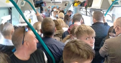 Picture shows passengers packed into Transport for Wales train 'like sardines'
