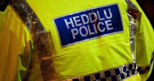 Man dies after Renault 'hits parked car' in early hours crash