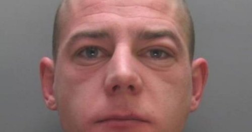 Drunken thug punched rail worker, attacked police and brought train to a halt