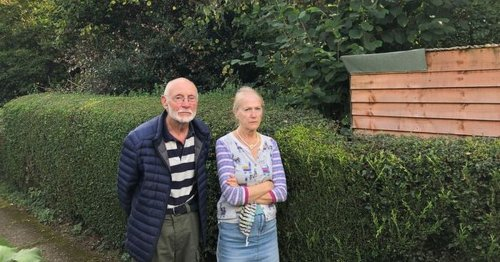 Couple say neighbour's messy garden has knocked £20k off their home