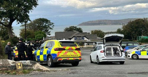 Armed police and dog team in large emergency services operation - updates