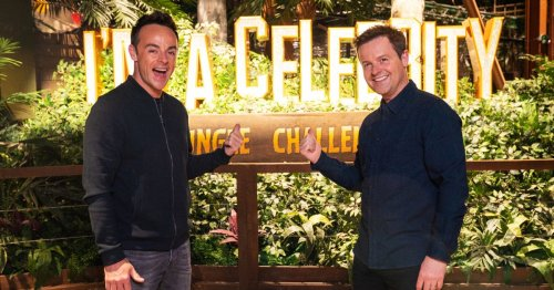 What Ant and Dec thought of the new I'm a Celebrity Jungle Challenge attraction