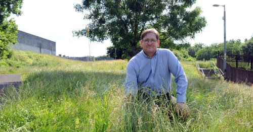 Calls to end war of words over North Lanarkshire grass cutting saga