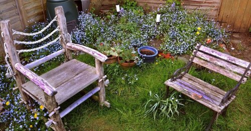 How to upcycle old bookshelves and bath tubs into stylish garden furniture