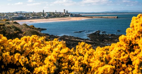 Which? reveals top UK seaside towns - but only two Scots locations make the list