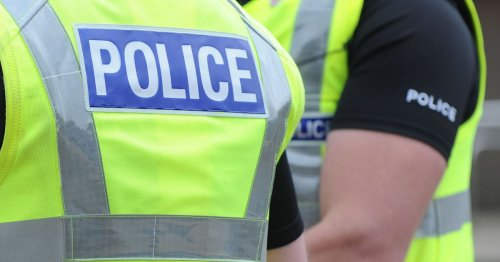 Man removed from Erskine property following street protest