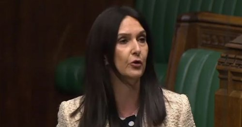 Disgraced MP Margaret Ferrier delivers Private Members' Bill presentation
