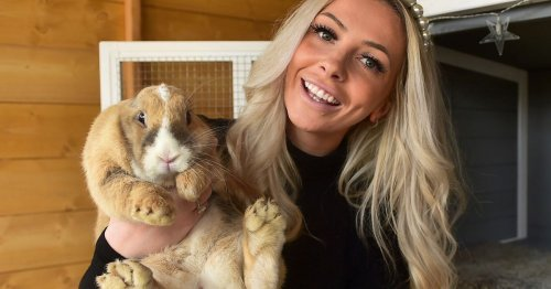 Rescue rabbit spurs new owner into creating luxurious bunny hotel