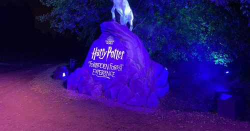 New Harry Potter Experience - times, ticket prices and all you need to know