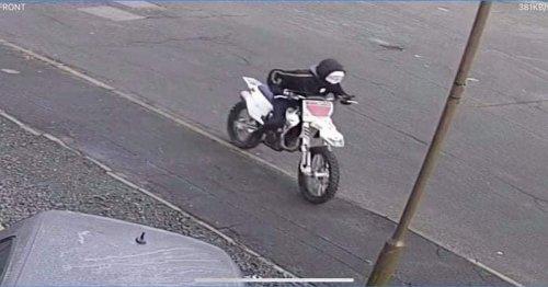 Brazen masked thief stole motorbike from Falkirk garden