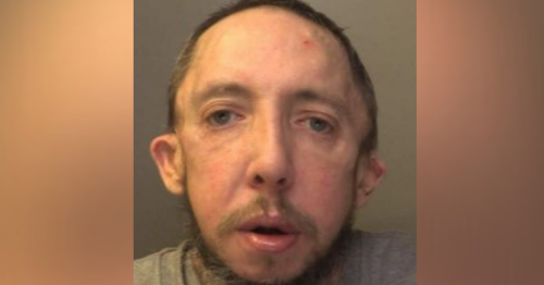 Man beat partner to death, placed toy next to body then went to buy cannabis