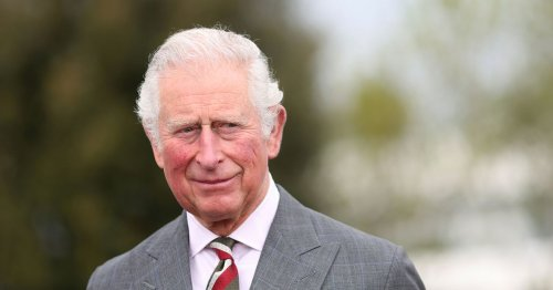Charles 'wants to give public greater access to royal palaces' when he's king
