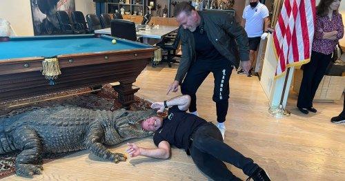 Alan Shearer 'becomes crocodile dinner' in visit to unlikely pal Schwarzenegger